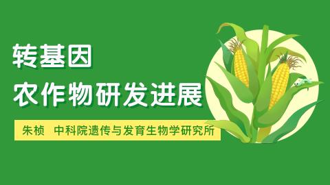 转基因农作物研发进展